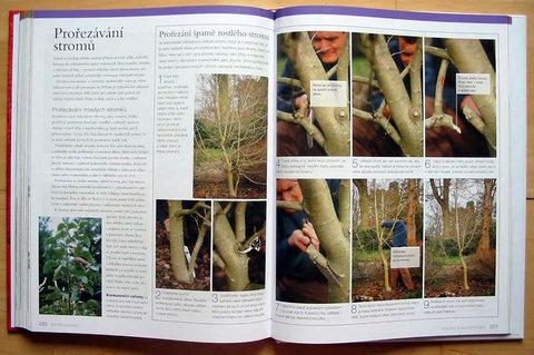 FOTKA - Naučte se zahradničit - Kompletní průvodce pro zahrádkáře