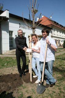 FOTKA - Herci z Divadla Na Jezerce zkrášlovali park novými stromky