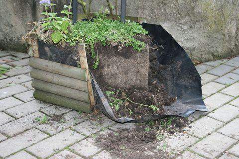 FOTKA - Krutý incident v ZOO Ústí nad Labem