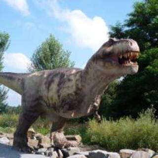 FOTKA - Dino park Orlová