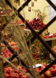FOTKA - Podzimní Flora Olomouc s festivalem gastronomie Olima