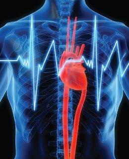 FOTKA - Multi-tabs® Complex 3 v 1 pomáhá snížit cholesterol v krvi, podporuje paměť a celkově posiluje organismus