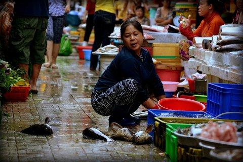 FOTKA - Na cestě po Ho Či Minově Městě