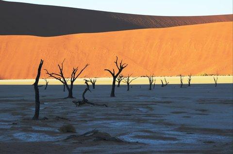 FOTKA - Na cestě po západní Namibii