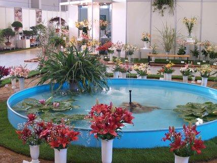 FOTKA - Celostátní výstava květin a zahradnické trhy KVĚTY 2013