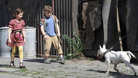 FOTKA - Dobrodru�n� a magick� film Modr� tygr