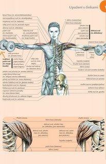 FOTKA - Fitness pro ženy - anatomie