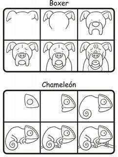 FOTKA - Kreslíme 101 zvířátek krok za krokem