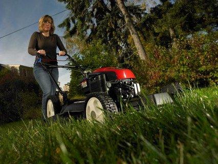 FOTKA - 3 největší mýty v péči o trávník