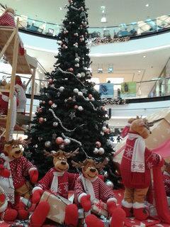 FOTKA - Vánoční strom splněných přání