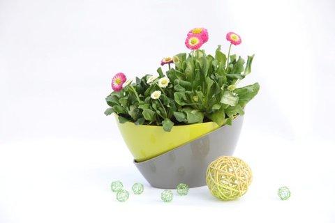 FOTKA - Chcete si na jaře zkrášlit byt i zahradu? Poradíme, jak na to!