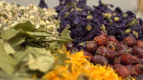 FOTKA - Kouzelné bylinky - Zázračné čaje