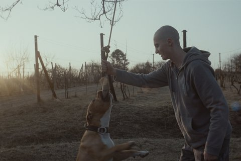 FOTKA - Film Můj pes Killer