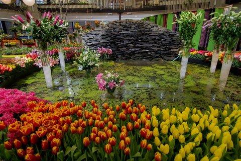 FOTKA - Jarní Flora Olomouc 2015 se promění ve Smyslů plnou zahradu. Ponořte se do ní!