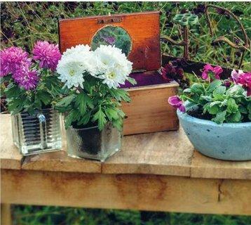 FOTKA - Dekorace do zahrady