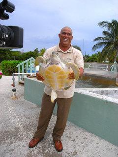 FOTKA - Na cestě po Kajmanských ostrovech