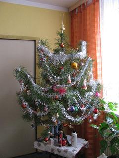 FOTKA - Dečka a vánoční stromeček