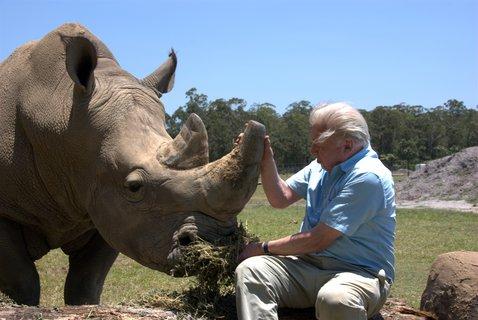 FOTKA - David Attenborough a jeho legendární dokumenty na Prima ZOOM
