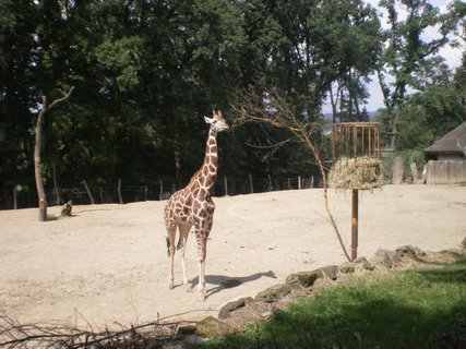 FOTKA - Zámek Lešná a Zoo Zlín