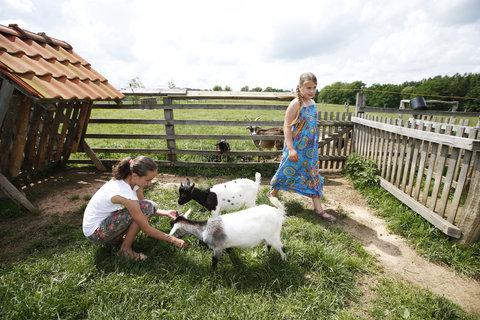 FOTKA - FARMA-PARK BLANÍK u Vlašimi