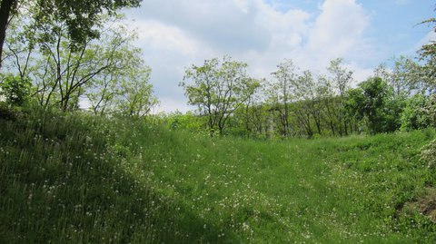 FOTKA - Kobyliská střelnice
