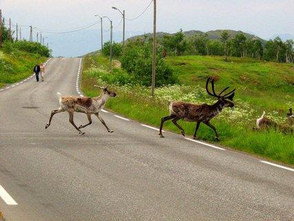 FOTKA - Na cestě po Laponsku
