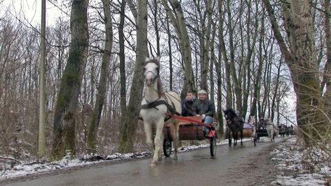FOTKA - Na cestě po Vojvodině