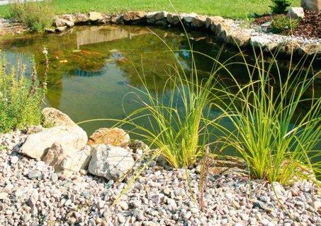 FOTKA - Jarní sezóna údržby bazénů a přírodních jezírek