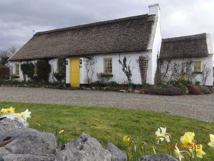 FOTKA - Irsko, země pastvin, hospůdek  a hlodášů…