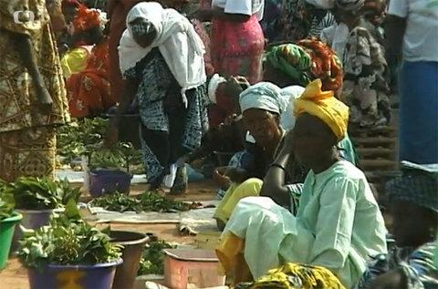 FOTKA - Cestománie: Gambie – Brána do Afriky