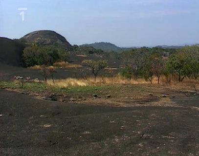 FOTKA - Cestománie - Středoafrická republika – Neklidné srdce Afriky