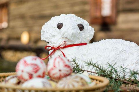 FOTKA - Nejlepší velikonoční beránek? Rady od profesionální valašské cukrářky