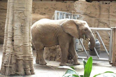 FOTKA - Za zvířátky na kouzelnou Moravu aneb Zoo Lešná