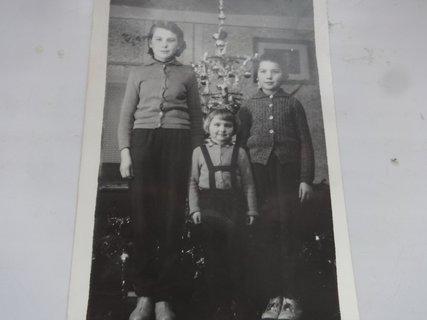 FOTKA - Vánoční dobrodružství s dobrým koncem