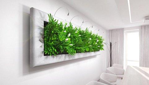 FOTKA - Kdo přivede domov k životu? Rostliny! Ale ne ledajaké…