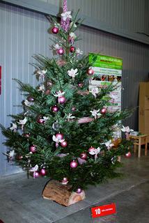FOTKA - Stříbrné vánoční dny – tradiční vánoční veletrh opět prozáří Letňany