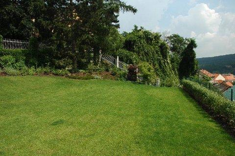 FOTKA - Jak pečovat o trávník po zimě?