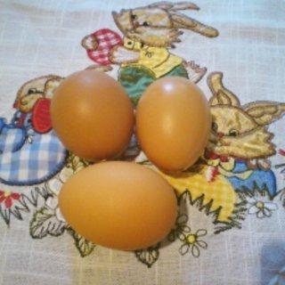 FOTKA - Jak vyfouknout velikonoční vajíčko