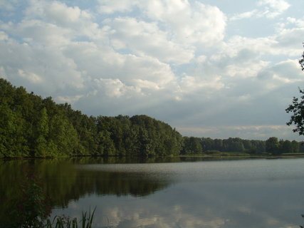 FOTKA - Tip na výlet do přírody – CHKO Poodří Polanská niva