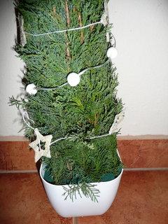 FOTKA - Vánoční dekorace – stromečky
