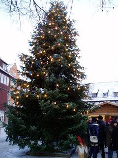 FOTKA - Na vánočním trhu