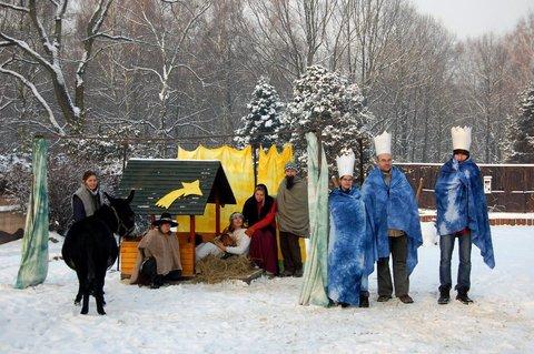 FOTKA - Strojení vánočních stromečků v ZOO Ostrava