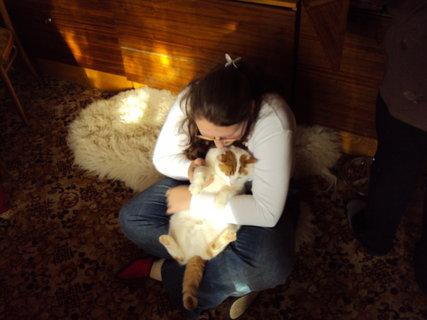 FOTKA - Moje milovaná zvířátka