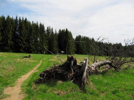 FOTKA - Šumava Churáňov – Za nádhernými vyhlídkami