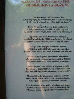 FOTKA - Peruc - nenápadná obec a 1000 let starý dub