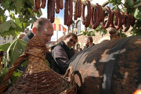 FOTKA - Burčákové slavnosti 2012 Hustopeče