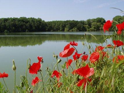 FOTKA - Hostivické rybníky