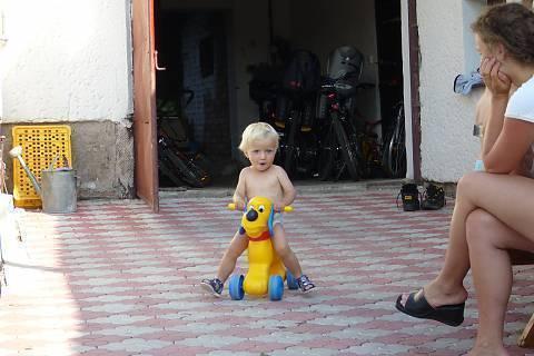 FOTKA - jízda na psu II.