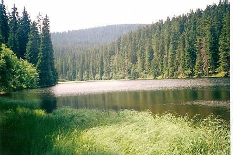 FOTKA - Jezero na Šumavě