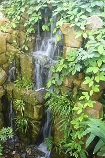 FOTKA - Botanická zahrada